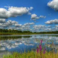 На берегу живописного озера :: Милешкин Владимир Алексеевич