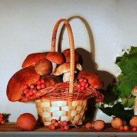Мой сегодняшний грибной урожай :: Павлова Татьяна Павлова