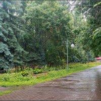Дождливый день :: Александр Лихачёв