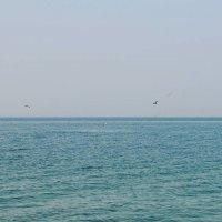 Море :: M A R I N E R