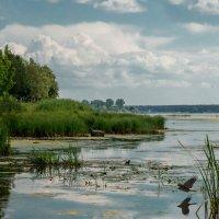 на озере :: MVMarina