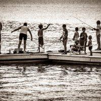 Рыбалка дело семейное :: Владимир Gorbunov