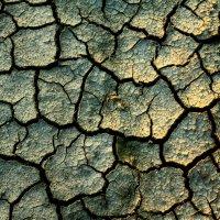засуха :: Евгений