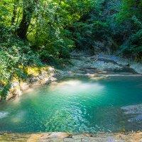 Река Куаго :: Виктор