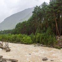 IMG_4169 горная река :: Олег Петрушин