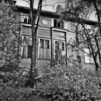 Север :: Игорь Шпаков