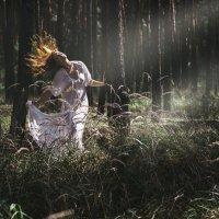 В лесу :: Вячеслав