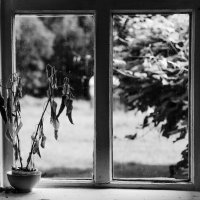 там за окном :: Anrijs Slišāns