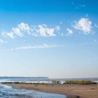 Залив в августе 2 :: Виталий