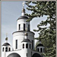 Церковь :: Михаил Цегалко
