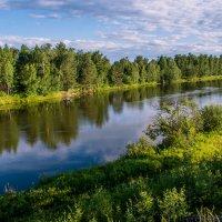 Река Зима, :: Светлана