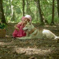 Красная шапочка и ее друг маленький волк) :: Ольга Осипова