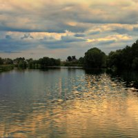 Вечернее золото реки. :: Наталия Скрипка