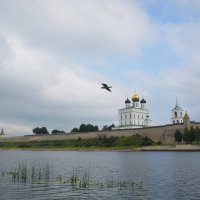 Вид на псковский Кром. :: Светлана Агапова