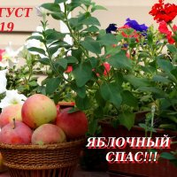 С праздником!!! :: Тамара (st.tamara)
