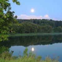 Восход луны над парком. :: Инна Щелокова