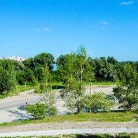 Дорога и деревья :: Света Кондрашова