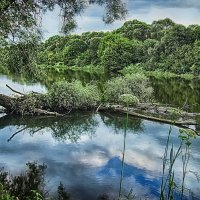 Течёт река.... :: Анатолий Михайлович
