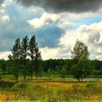 О природе в августе :: Милешкин Владимир Алексеевич