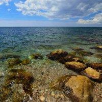 какого  цвета море....))) :: Гриша  6х9 или 9х12