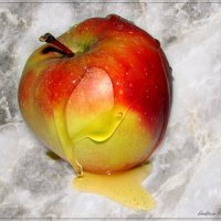 Яблочко медовое :: °•●Елена●•° Аникина♀