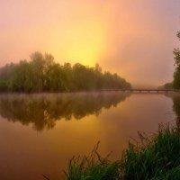утро.туман.солнце встает... :: юрий иванов