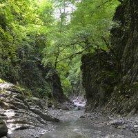 Каньон реки :: Александр Бормотов