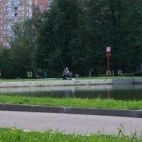 Рыбное место - три :: Владимир  Зотов
