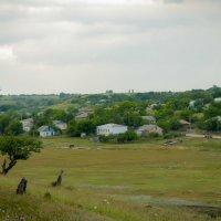 Село в Молдавии :: Дмитрий Крыжановский