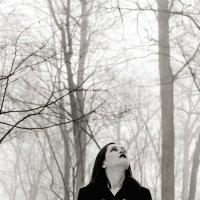 туман :: Надежда Родина