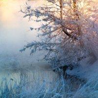 Морозец :: Владимир Миронов