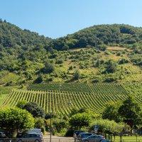 Виноградники на склонах Мозеля :: Witalij Loewin