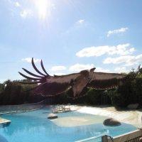 зоопарк Бюваль :: evgeniy orlik