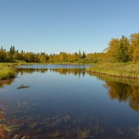 Осень крадётся!!!! :: Олег Кулябин
