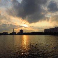 Вечера были упоительны :: Андрей Лукьянов