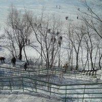 Спуск к Волге (Загородный  парк) :: марина ковшова