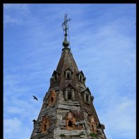 Купол колокольни :: Алексей Дмитриев
