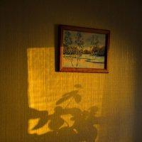 Вечерний зайчик в комнате :: юрий Амосов