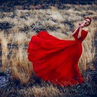 Hold My Fire :: Ruslan Bolgov