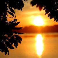 Сямозерский закат :: Tasha