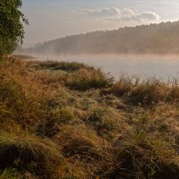 Утренний туман :: Анатолий Иргл