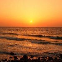 Золотисто-медовый восход :: Swetlana V