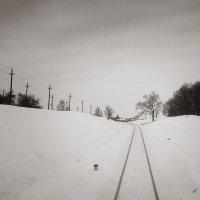 Зима. 8-й пикет. :: Андрий Майковский