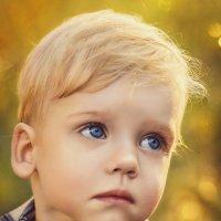 Чистота детских глаз... :: Julia Art