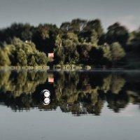 Мячик на пруду. :: Olga Kramoreva