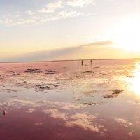 Розовое озеро :: Юрий Сушицкий