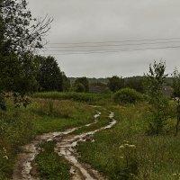 В деревню :: Александр