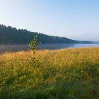 Утро августа :: Анатолий Иргл