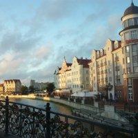 Калининград :: Надежда