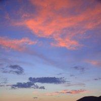 Пурпурный закат. :: Оля Богданович